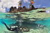 去毛里求斯潜水和热带鱼群同游