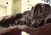 千年乌木雕成精美艺术品 要价一亿